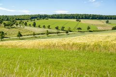 Sunny rural landscape. Sunny idyllic rural landscape with fields and meadows in Hohenlohe, a district in Southern Germany at summer time Stock Images