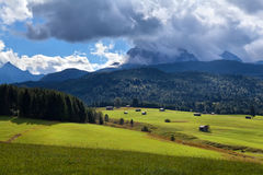 Sunny rural meadows in Alps Royalty Free Stock Photo