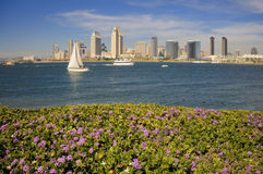 Sunny San Diego. San Diego downtown skyline in spring time Royalty Free Stock Photos