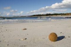 Sunny sand beach on Mallorca, Spain. Lonely sand beach in the sunny day, Mallorca, Spain Royalty Free Stock Photography