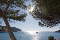 Sunny Sant Elm autumn beach. Trees, sun and boats and people on the beach on a sunny day in Sant Elm, Mallorca, Balearic islands, Spain royalty free stock photo