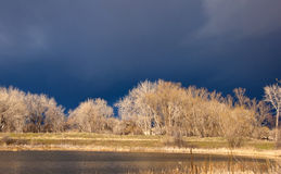 Sunny Scene with Storm Brewing. Dramatic sunny scene with a dark stormy background in a wild area by a peaceful lake on the Colorado prairie Stock Photos