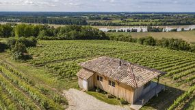 Sunny scenery with small hut in a vineyard at late summer time royalty free stock image