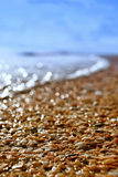 Sunny sea shore. In sunny day waving sea shore with wet shells Stock Photography