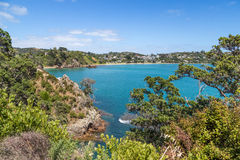 Sunny sea view on Waiheke island Stock Photography