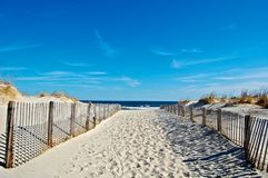 Sunny Seaside Beach Royalty Free Stock Photo