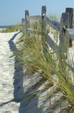 Sunny Seaside Fence. Fence at the beach,  The wood is gray and weathered.  There are sprays of grass.  The sky is blue and cloudless Stock Image