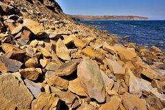 sunny shore fotografia stock