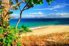 Sunny shore Royalty Free Stock Image