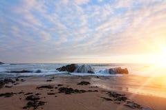 Sunny shorelin Stock Photo