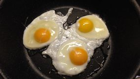 Sunny side eggs Royalty Free Stock Image
