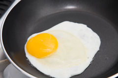 Free Sunny Side Up Royalty Free Stock Photography - 48619447