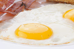 Sunny side up fried egg Stock Photo