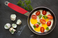 Sunny side up quail eggs fry with tomato and parsley, top view Stock Photo