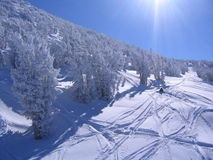 Sunny ski slope. Ski tracks in fresh powder on a sunny slope Stock Images