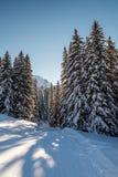 Sunny Ski Slope près de Megeve dans les Alpes français Photographie stock libre de droits