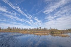 Sunny Skies sobre o pântano de Okefenokee fotografia de stock royalty free