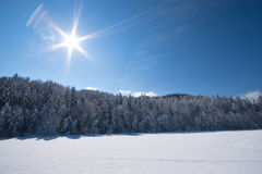 Sunny snow. Fresh snow on sunny day royalty free stock images