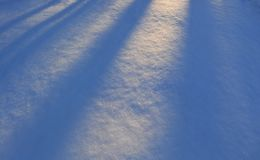 Sunny snow covered ground Royalty Free Stock Images