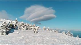 Sunny Snow Covered Mountain Top f?r flyg- flygparad sn?ig vintergr?nt tr?d Forest Shot Flyg- sikt av tr?d som gjuter skuggor arkivfilmer