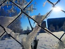 The Winter day. Sunny and snowy fabulous winter day Royalty Free Stock Images