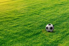 Sunny soccer field with ball royalty free stock photo