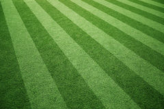 Sunny soccer grass playground Royalty Free Stock Image