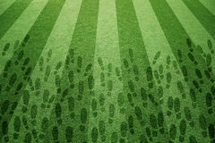 Sunny soccer grass with shoe prints Royalty Free Stock Images