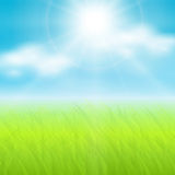 Sunny spring  background. Vector background, sunny spring sky and green meadow Royalty Free Stock Photos