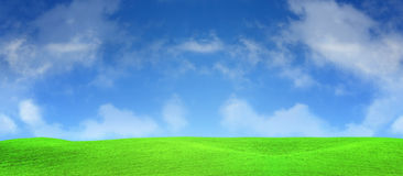 Sunny spring day and green field Stock Photo