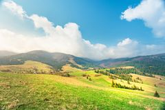 Sunny spring day. Green mountain valley. Stock Photography