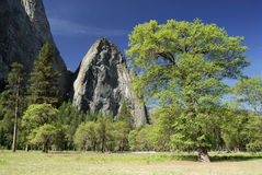 Sunny spring day in Yosemite Valley Royalty Free Stock Image