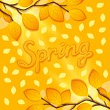 Sunny spring design Stock Images