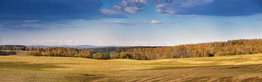 Sunny spring fields in the evening Stock Images