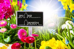 Sunny Spring Flower, Calligraphy Frohe Ostern Means Happy Easter stock photography