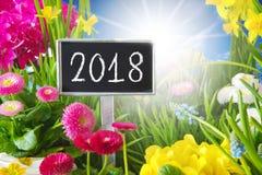 Sunny Spring Flower Meadow, 2018 Fotografía de archivo