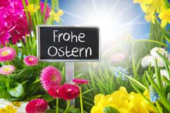 Sunny Spring Flower Meadow, Frohe Ostern significa a Páscoa feliz fotografia de stock royalty free