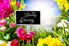 Sunny Spring Flower Meadow, grand nettoyage de calligraphie photo stock