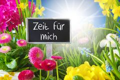 Sunny Spring Flower Meadow, Zeit Fuer Mich Means Time For Me Stock Photos