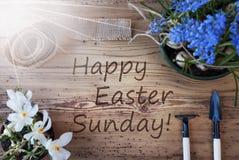 Sunny Spring Flowers lycklig påsk söndag för text royaltyfria foton