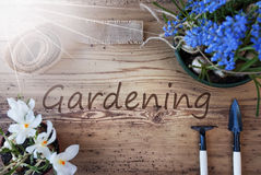 Sunny Spring Flowers, Text Gardening Stock Images