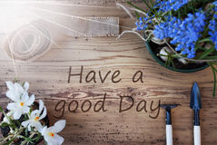 Sunny Spring Flowers, Text Have A Good Day Stock Photos
