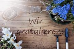 Sunny Spring Flowers, Wir Gratulieren veut dire des félicitations Photographie stock libre de droits
