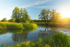 Sunny spring landscape. Blue water in lake and green grass illum Stock Photography