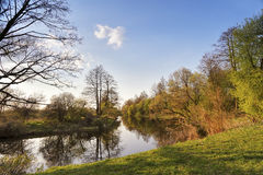Sunny spring landscape. River in a green forest Royalty Free Stock Photo