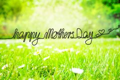 Sunny Spring Meadow, Daisy, Calligraphy Happy Mothers Day royalty free stock images