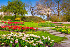 Sunny spring morning in the botanical garden of Essen town Stock Image