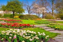 Sunny spring morning in the botanical garden of Essen town Stock Image