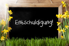 Sunny Spring Narcissus, Chalkboard, Entschuldigung Means Excuse Stock Photo