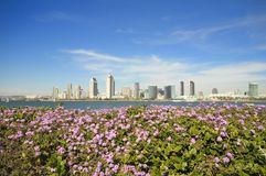 Sunny spring in San Diego. San Diego downtown skyline in a sunny spring day Stock Image